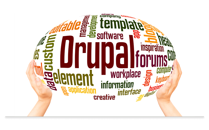 Custom Drupal Development Services