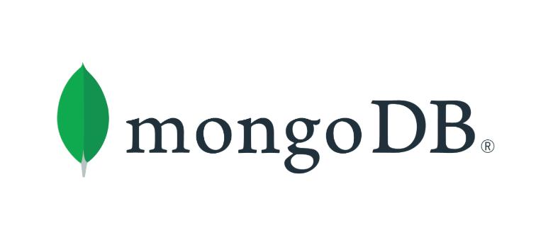 MongoDB React Native Database